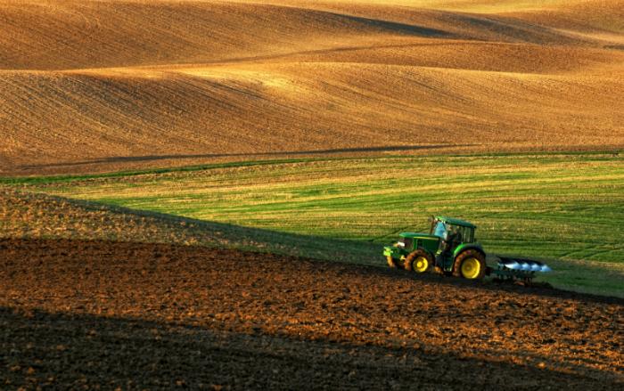 Finek agricultura